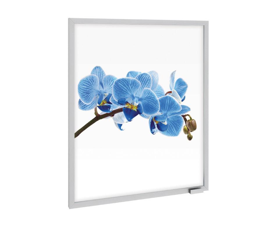 Фасад Анна ФВР-60 Орхидея синяя к корпусу АП-60Мебель для кухни<br>Фасад «Анна ФВР-60 Орхидея синяя» поможет оживить интерьер вашей кухни, привнеся в комнату свежие нотки современности. Алюминиевая поверхность украшена необычным декором – изображение орхидеи яркостью красок притягивает к себе взгляд, напоминая о приятных весенних днях. Завершает композицию неброская ручка, которая служит удобному открыванию дверцы. Превосходное качество материалов обеспечивает длительный срок службы фасада: даже спустя годы пользования он будет выглядеть так же хорошо, как и в первый день после покупки. Обновите кухню стильно – закажите модель «Анна ФВР-60 Орхидея синяя» прямо сейчас.<br><br>Длина мм: 596<br>Высота мм: 713<br>Глубина мм: 21
