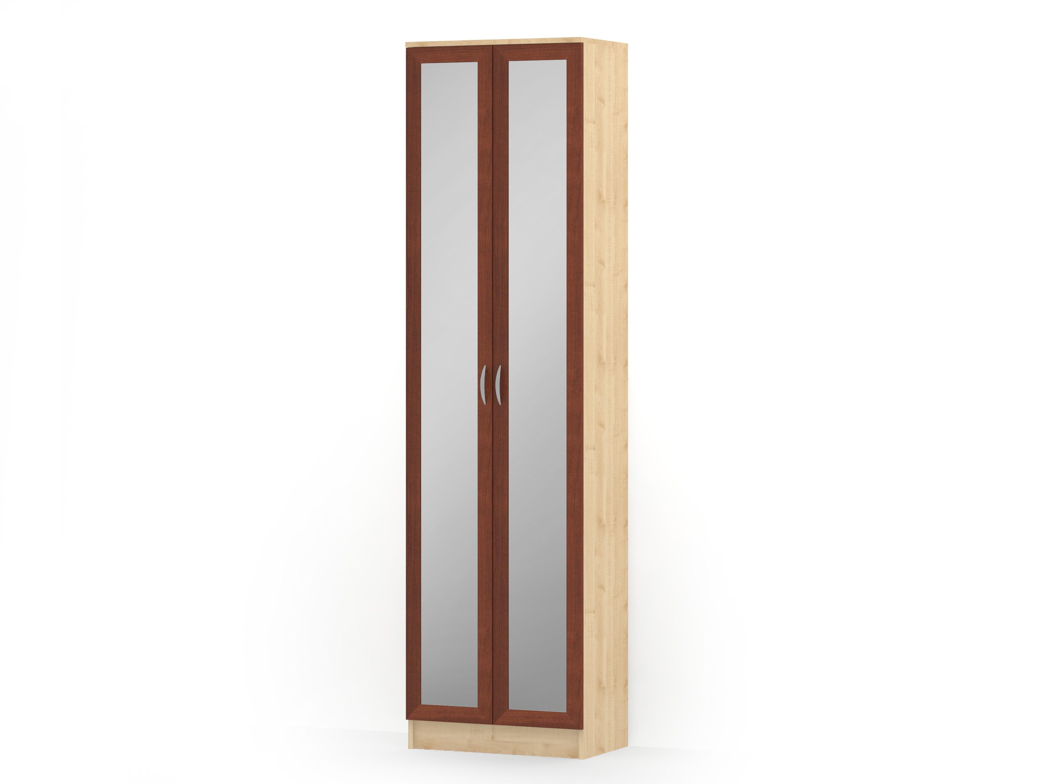 Шкаф распашной 2 двери зеркало (кронштейн) ГОРИЗОНТ-Р