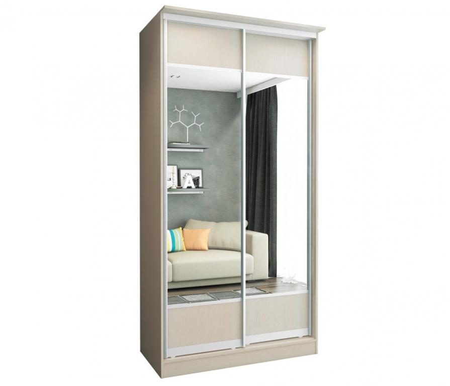 Двустворчатый шкаф-купе с зеркалом высота 2.70.